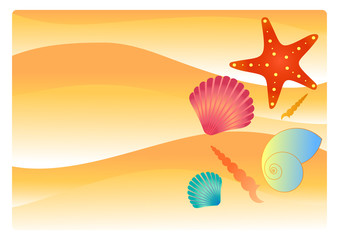 Beach sand with shells and starfish. Illustration summer concept
