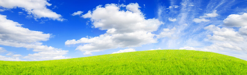 Fototapete - green field and blue sky with clouds Sunny day, beautiful rural landscape, panoramic banner