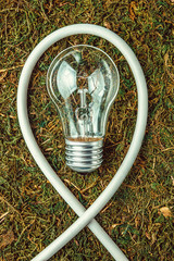 Concept ecology. Light bulb on orange natural moss with copy space