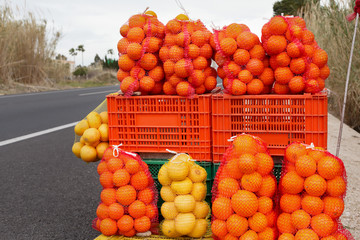 Citrusfruits for Sale along the road in Spain