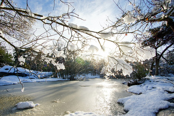Franchard pond under snow in Fontainebleau forest