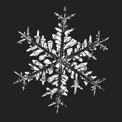White snowflake on black background. Vector illustration based on macro photo of real snow crystal: elegant star plate with fine hexagonal symmetry, six short, broad arms and complex inner details.