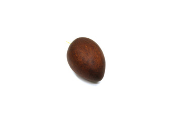 Avocado bone on white background