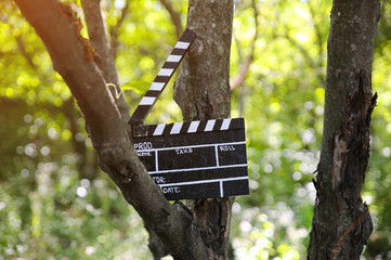 Black clapperboard hanging on the tree in park . Directing and filming of  some amateur cinema...