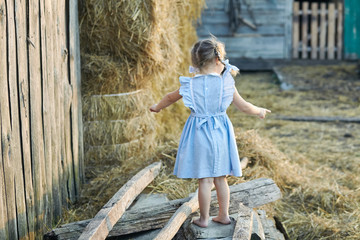 Cute little funny girl in a blue dress is sitting in the village yard. Happy childhood. Village stories