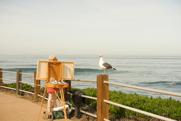 seagull poses for a painter