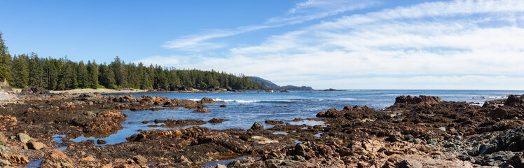 Rocky beach on the Pacific Ocean Coast during a sunny summer day. Taken in Palmerston Beach, Northern Vancouver Island, BC, Canada.
