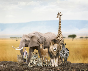 Wall Mural - Group of Safari Animal Friends