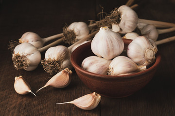 Garlic cloves and bulb in a clay bowl.