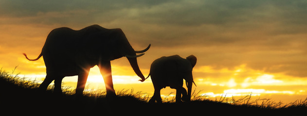 Wall Mural - Mother and Baby Elephant African Sunset Silhouette