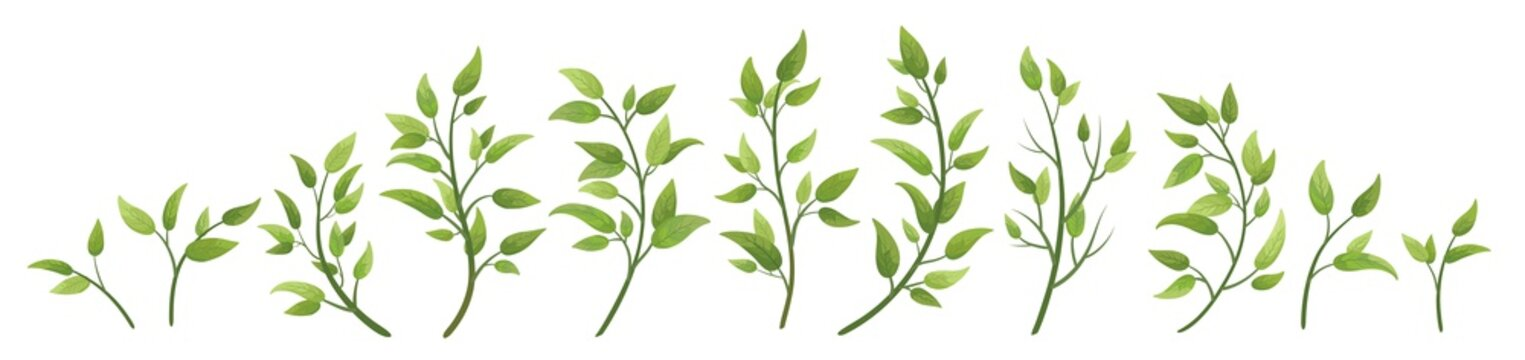 Vector designer elements set collection green branch with leaves. Decorative beauty elegant illustration for design leaf in watercolor style.