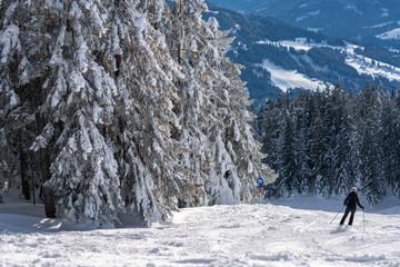 Skipiste mit Skifahrer am verschneiten Waldrand