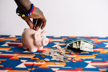 Man adding money to Piggy bank