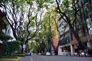 calles de la ciudad de mexico