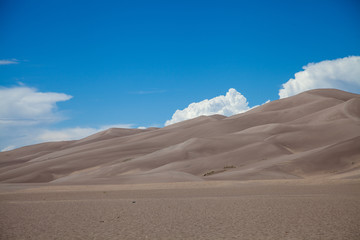 Sand Dune, Great Sand Dunes National Park, Colorado
