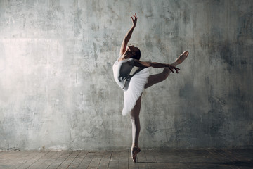 Photo Blinds Dance School Ballerina female. Young beautiful woman ballet dancer, dressed in professional outfit, pointe shoes and white tutu.