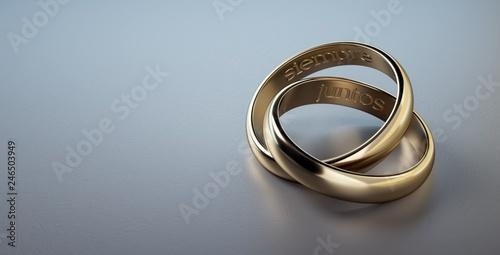 5e020b1653c3 Dos anillos de boda entrelazados con frase siempre juntos en español ...