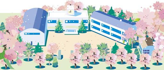 桜咲く学校02