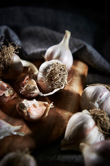 Garlic cloves with dramatic lights