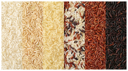 Set of rows with different uncooked rice, closeup view