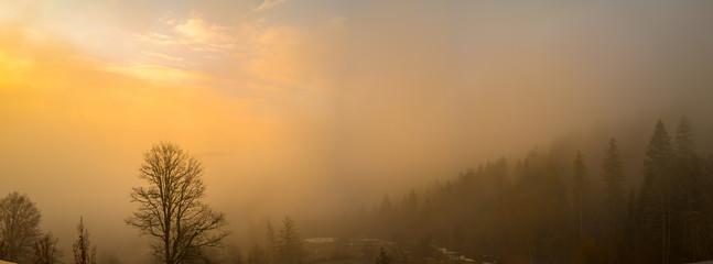 Nebel und Dunst mit Morgenrot im Schwarzwald