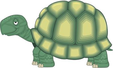 Turtle Standing Cartoon Vector Illustration