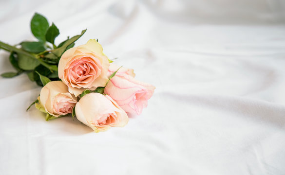 Romantic pink roses bouquet on the white bed sheets, beautiful soft delicate roses on the bed, romantic concept
