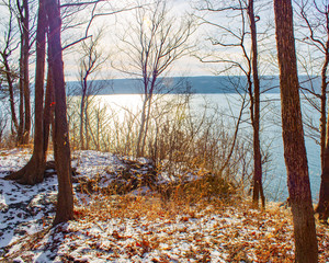 trees and shadows overlooking lake in winter