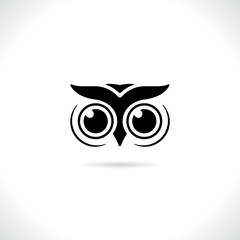 Vector of an owl face design on white background. animal bird lo