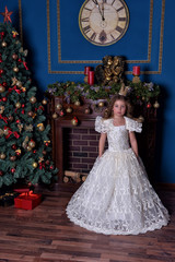 portrait of a little girl princess in a crown in a white dress