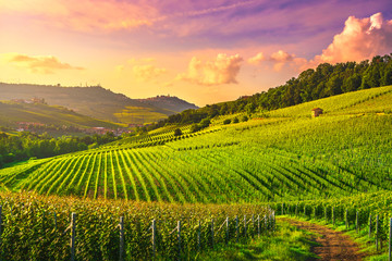 Langhe vineyards view, Barolo and La Morra, Piedmont, Italy Europe. Wall mural