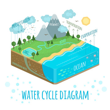 Water Cycle Diagram isometric illustration