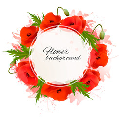 Fototapete - Flower nature background with red poppies. Vector