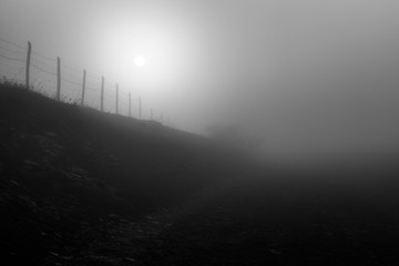 Low sun filtered through fog on a mountain, with a fence near a road