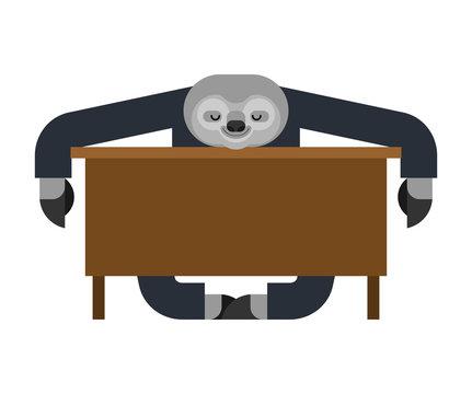 Sloth sleeping at work. lazybones at table. animal Cartoon businessman. Vector illustration