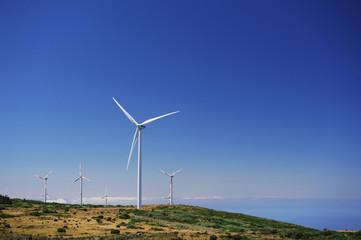Aerogenerator Windmills In Front Of Ocean Sea
