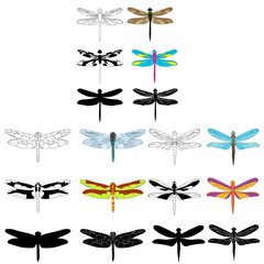 vector, isolated, dragonfly, sketch, silhouette set