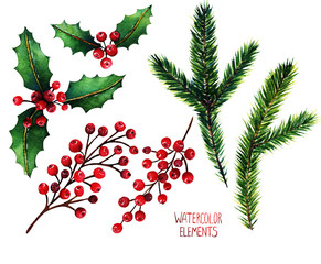 Watercolor illustration. Different elements for Christmas design, fir branches, red berries, mistletoe
