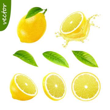 3d realistic vector set of elements (whole lemon with leaf , sliced lemon, splash lemon juice, leaves) editable handmade mesh