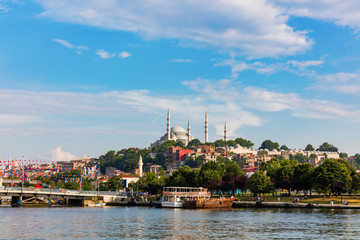 The Blue Mosque and Hagia Sophia in downtown Istanbul