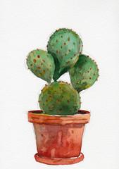 cactus in pot watercolor