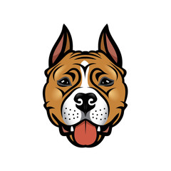 American Staffordshire Terrier dog - isolated