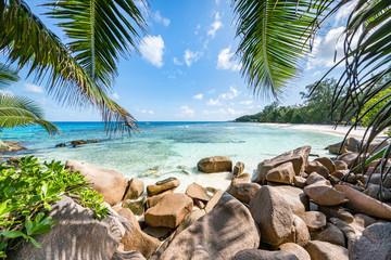 Wall Mural - Tropische Insel auf den Seychellen