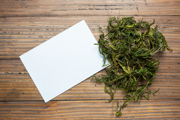 dry green cannabis hemp leaves on wood background.