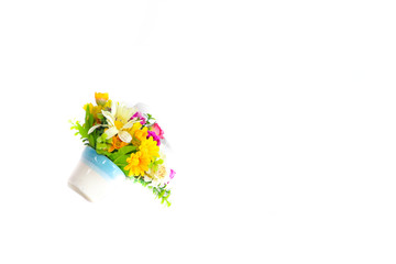 The Flower plastic  Close up white background