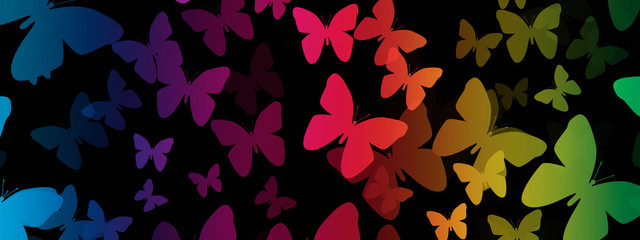 Rainbow Butterfly Background