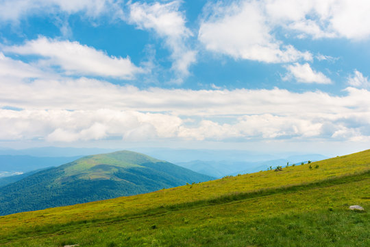 beautiful summer landscape in mountains. sunny weather with gorgeous cloudscape on a blue sky. grassy green slope.