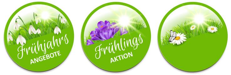 Button Set mit Frühlingsblumen, Schneeglöckchen, Krokuss, Margerite - Frühling