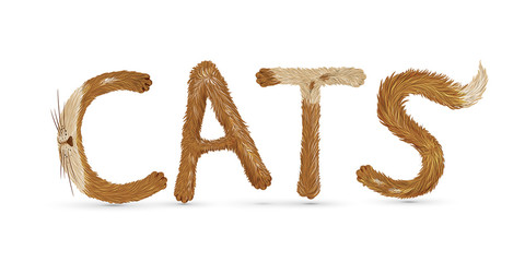 "text ""cat"" writing with funny fluffy spot lteters on white background, red cat letters,"