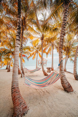 View of empty hammocks on beach